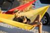 Hamak podróżny  Ultralight Hammock XL Yellow Sea To Summit