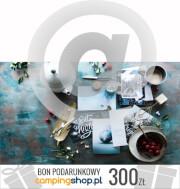 e-Bon podarunkowy na Gwiazdkę o wartości 300 zł do samodzielnego wydruku