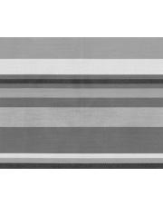 Kempingowa wykładzina do przedsionka Kinetic szara 250 x 600 cm Brunner