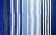 Wykładzina podłogowa do przedsionka Viais 300 x 250 cm niebieska Brunner