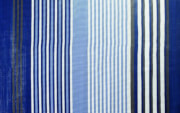 Wykładzina podłogowa do przedsionka Viais 700 x 250 cm niebieska Brunner